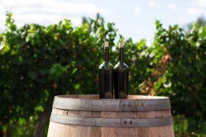 Weinflaschen für die Weinherstellung um Wein selber machen zu können