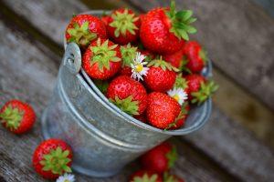 Erdbeerwein selber machen
