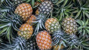 Ananaswein selber machen