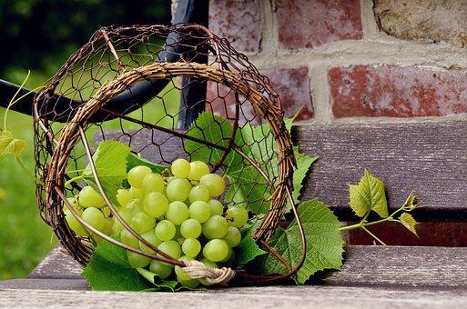 Wein selber machen Rezept